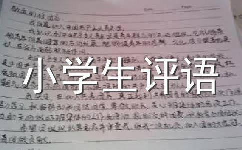 【精华】小学评语范文