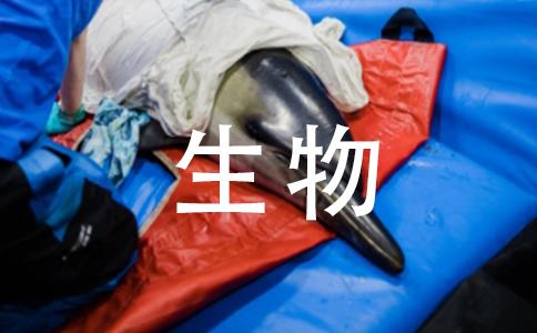 累官故不失州郡翻译