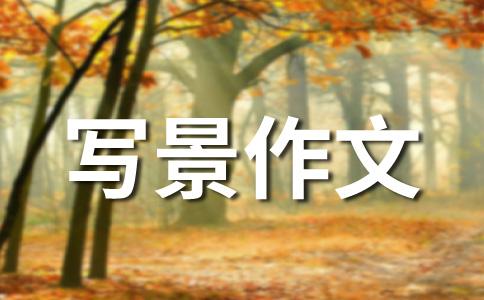 【热门】日出作文汇编十四篇