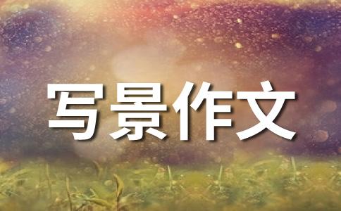 【精品】金秋十月500字作文(通用5篇)
