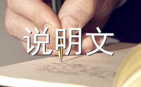 【荐】小制作作文汇编六篇