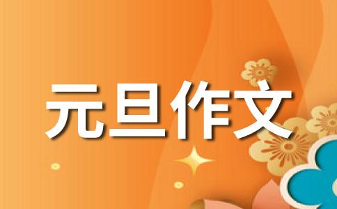【热门】元旦800字作文汇编七篇