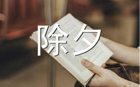 【精品】除夕之夜400字作文