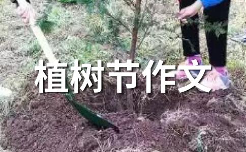 植树节感想