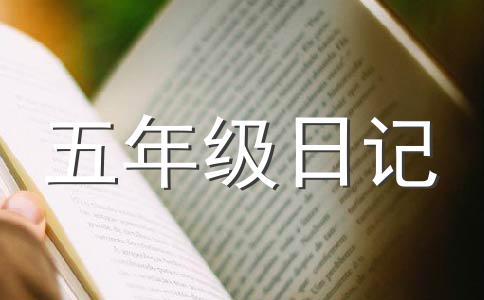 ★数学日记作文(精选5篇)
