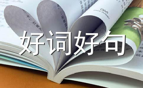 【精华】毕业400字作文