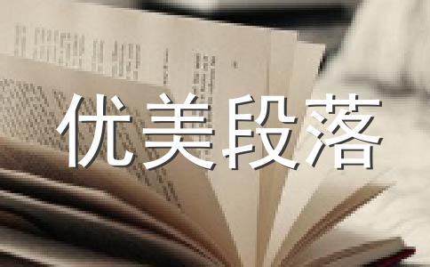 【实用】老师800字作文(精选5篇)